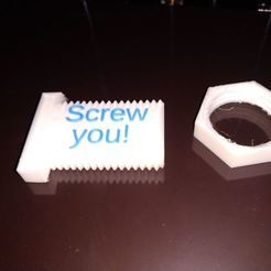 "Download free 3D printing templates ""Screw you!"" screw and nut set, cavac"