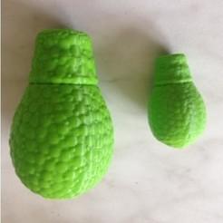 IMG_1457 carre.jpg Download STL file amoeba (Nebella) • 3D printing object, minichti