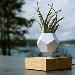 Download free 3D printing designs Levitating Planter, Ananords