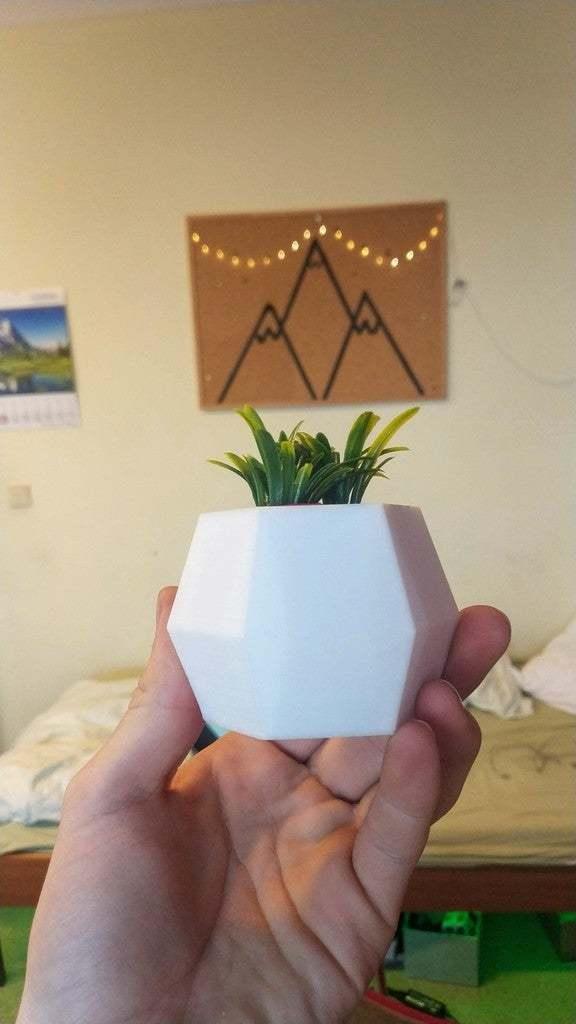 IMG_20190318_171722.jpg Télécharger fichier STL gratuit Mini jardinière flottante • Modèle pour imprimante 3D, Ananords