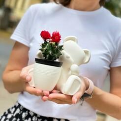 IMG_1241.JPG Télécharger fichier STL Vase de l'ourson, cadeau de la Saint-Valentin • Modèle à imprimer en 3D, zealvespinhal