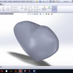 Download free 3D model Heart , ahmdmtwly54