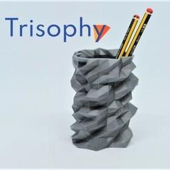 Captura.JPG Télécharger fichier STL gratuit Pot à crayons POLY CHAOS • Design à imprimer en 3D, Trisophy