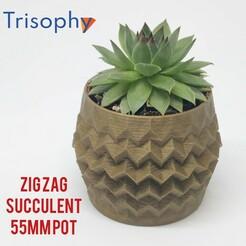 InShot_20210119_100132711.jpg Download STL file ZIG ZAG - 55 mm suculent pot • 3D printable model, Trisophy