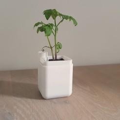Plant pot.jpg Download free STL file Self-Watering Planter (Small) • 3D printable design, Keune