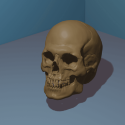 untitledKRANE.png Download STL file 3D Skull • Template to 3D print, chazz1981