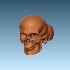 ringu1.jpg Télécharger fichier STL Anneau de crâne • Objet imprimable en 3D, chazz1981