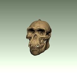 chimp1.jpg Télécharger fichier STL Crâne de boeuf • Design à imprimer en 3D, chazz1981