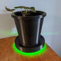 IMG_20200722_180833.jpg Télécharger fichier STL gratuit Pot de fleur - Flower pot • Plan pour imprimante 3D, rockprint3d