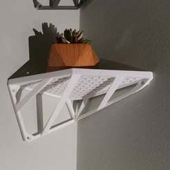 Shelf_With_Plant.jpg Download free STL file Corner Shelf • 3D printing design, kaeveedesign
