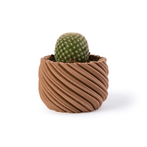 Download 3D printer designs Cactus planter - Whirly, Nosekdesign