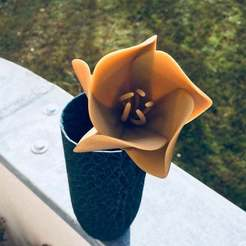 Download free 3D printer designs Abstract flower, Nosekdesign