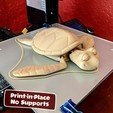 Télécharger fichier impression 3D Tortue mignonne en impression flexo sur place, dsopala