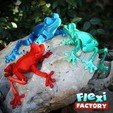 Frog_04.jpg Download STL file Cute Flexi Print-in-Place Frog • Template to 3D print, FlexiFactory