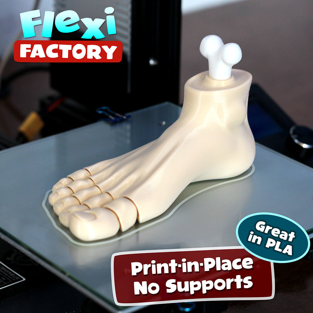 Foot_1.jpg Download STL file Flexi Print-in-Place Foot • 3D printer template, FlexiFactory