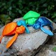 Download 3D printer model Cute Flexi Print-in-Place Turtle, dsopala