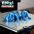 Download STL file Cute Flexi Print-in-Place Ant • 3D printing design, dsopala