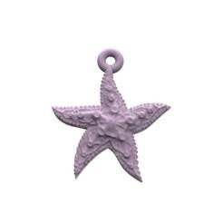 model 4.167.jpg Télécharger fichier STL Belle étoile de mer • Plan imprimable en 3D, papcarlo