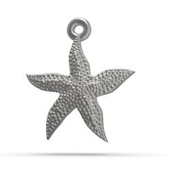 model 4.201.jpg Télécharger fichier STL Étoile de mer superbe • Objet pour impression 3D, papcarlo