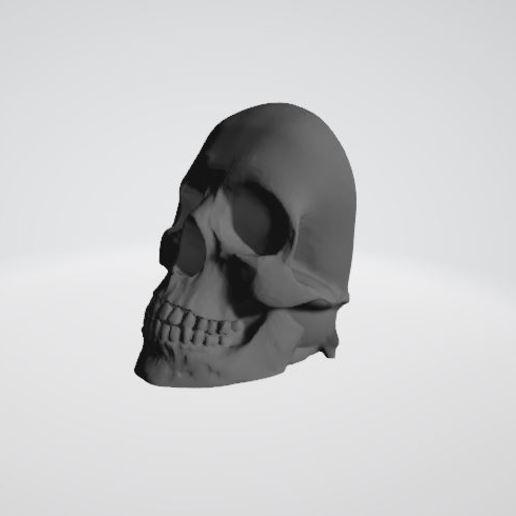 Download STL file Skulls for wall decoration • 3D printing object, JPool