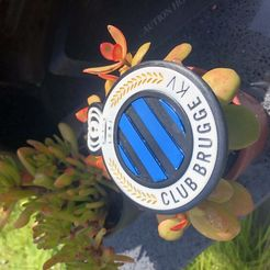 Download 3D printer designs Club Brugge logo, gilstruyf