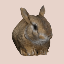 Captura de pantalla 2021-01-17 a las 12.04.39.png Download STL file rabbit decoration • Model to 3D print, jr160