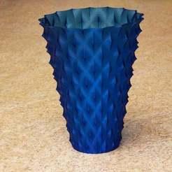 IMG_0139_spiny_vase.jpg Download free STL file Spiny Vase • 3D printing model, David1729