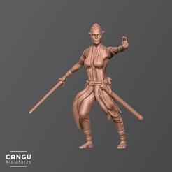 Descargar modelos 3D gratis Medio elfo Bladesinger, CanguMiniatures