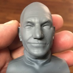 Download 3D printing templates Patrick Stewart Bust, byteknight