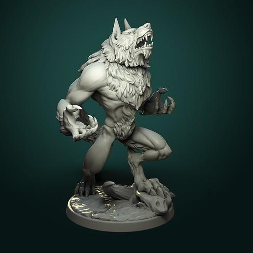 Furious Werewolf_V1_inst1.jpg Télécharger fichier STL Loup-garou furieux (2 variantes) • Modèle à imprimer en 3D, White_Werewolf_Tavern
