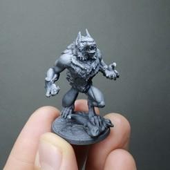 IMG_2022.jpg Download STL file Furious Werewolf (2 variants) • 3D printer template, White_Werewolf_Tavern