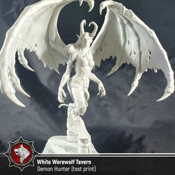 Download free 3D printer model Demon Hunter - World of Warcraft (Fan art), White_Werewolf_Tavern
