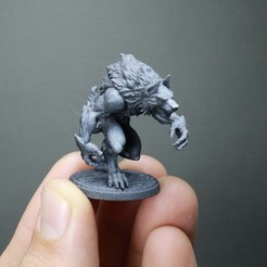 IMG_2021.jpg Download STL file Common Werewolf (2 variants) • Object to 3D print, White_Werewolf_Tavern
