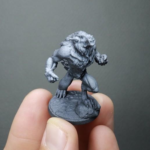 IMG_2023.jpg Télécharger fichier STL Loup-garou furieux (2 variantes) • Modèle à imprimer en 3D, White_Werewolf_Tavern