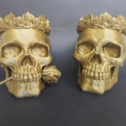 20200619_190852.jpg Download STL file Pair of skulls • 3D printable model, ergio959