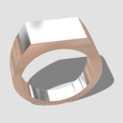 Télécharger fichier STL Taille de la bague de type phoque 17 • Plan imprimable en 3D, palopezlafuente