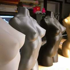 IMG_0089_copia.jpg Download free STL file Woman body optimised for vase mode • 3D printing object, damy2000