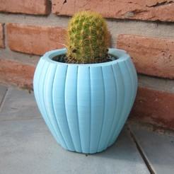 CactusPot9a.JPG Download STL file CactusPot9 • 3D print object, JuanLC