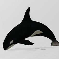 Capture.JPG Download free STL file Orca • Design to 3D print, Stephtvt