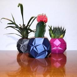 IMG_20201102_223115.jpg Télécharger fichier STL Succulent pot d'origami • Objet pour impression 3D, hruska
