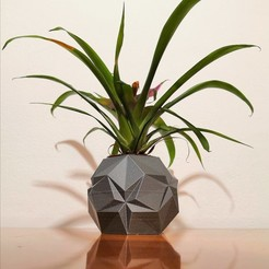 IMG_20201011_202906.jpg Download STL file Origami star pot • 3D printing object, hruska