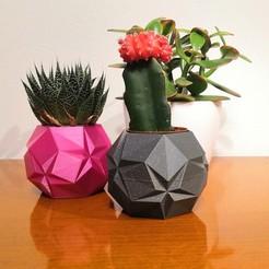 IMG_20201027_222123.jpg Download STL file Origami star pot • 3D printing object, hruska