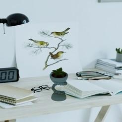 Download 3D printer designs Spiral planter, tahaalraadi