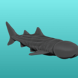 2.png Download STL file SharkDick • Model to 3D print, ManelRos