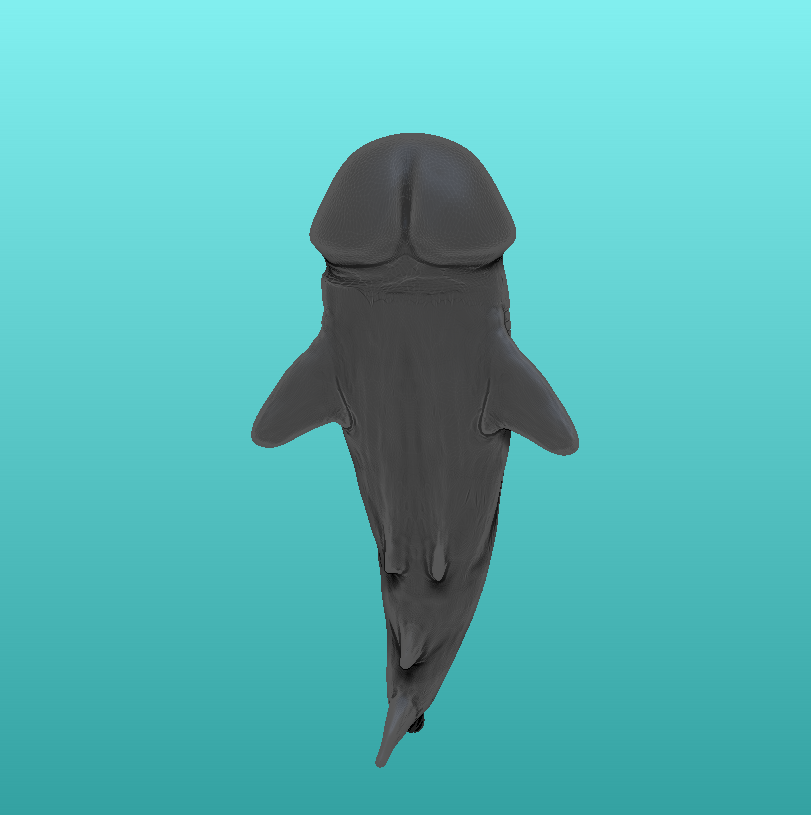 3.png Download STL file SharkDick • Model to 3D print, ManelRos