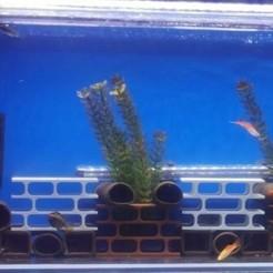 5.jpg Télécharger fichier STL gratuit The 3D Smith - Les grottes de l'aquarium • Design à imprimer en 3D, the3dsmith