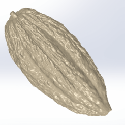 02.Fruto_Cacao.png Download STL file COCOA FRUIT • 3D printable model, 4D_CAD_CAM