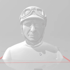 snapshot.png Download free STL file F1 CORRIDOR MUD BUST • 3D print object, takarashu