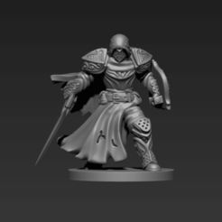 p1.png Download STL file Paladin - Fighter Miniature • 3D printable template, ELDRITH
