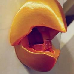 Télécharger fichier STL PORTE-MANTEAU À BEC DE PERROQUET • Objet à imprimer en 3D, JasonShallcross